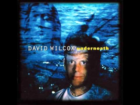 David Wilcox - Guilty Either Way