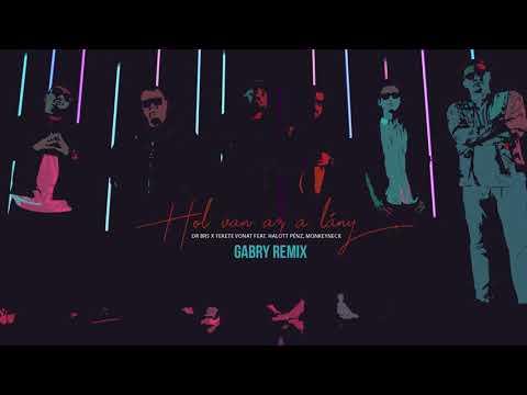 DR BRS X Fekete Vonat Feat  Halott Pénz, Monkeyneck - Hol Van Az A Lány (Gabry Remix)