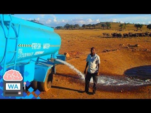 Dieser Mann transportiert jeden Tag Wasser, um durstige Tiere zu retten I Wissensautomat