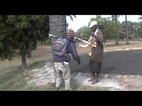 The Gambia 2/3 Cherno Lamin Camara the local guide