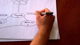 Data protocol extension. GPS implementation. (Изменения протокола данных,GPS)