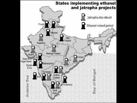 Development of Biofuels in India
