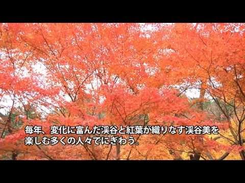 おかやまの紅葉 「奥津渓」