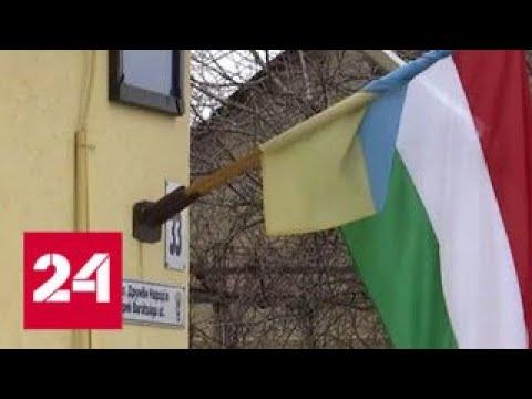 Кому венгерские паспорта: на западе Украины пакуют чемоданы - Россия 24