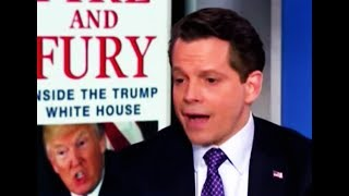 Stephanie Ruhle DRAGS Anthony Scaramucci in a Moment of Sweet Perfection