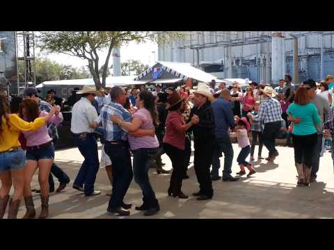 Rodeo Houston tx 2015
