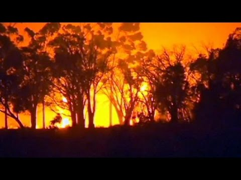 Australian wildfires wipe out 95 homes