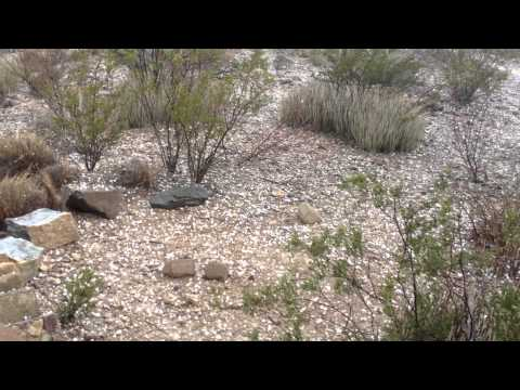 Hail storm in Terlingua, TX 5-14-2013