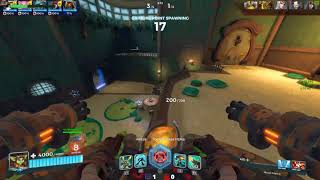 Paladins on PC with a Controller
