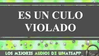 Es Un Culo Violado - Conversaciones De Whatsapp - Los Mejores Audios Y Videos Whatsapp