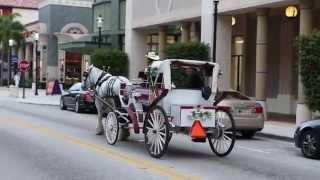 Palm Beach, Florida: Diversión Urbana De Día Y De Noche