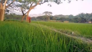 Download Short Film Shot Shongo | Charpumdi Hossainpur Kishoregonj | Islamic Natok 3Gp Mp4