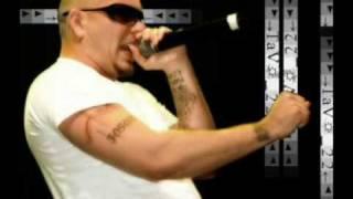 Watch Pitbull Preguntale video