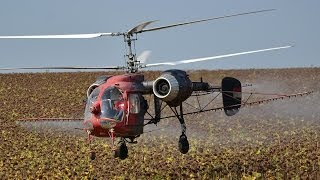 Kamov Ka-26 (HA-MPB) agricultural flight near Gadány, Hungary