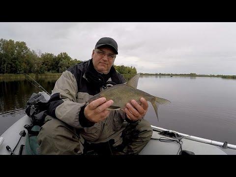 МИКРОДЖИГ. Ловим мирную рыбу.