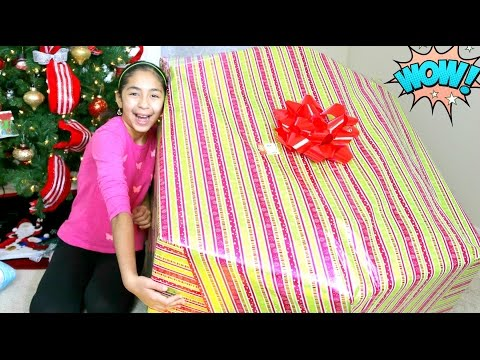 Opening a Giant Christmas Present What I got for Christmas B2cutecupcakes