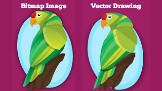 Easily convert bitmap images into vector drawing