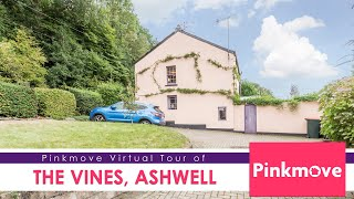 Pinkmove Virtual of The Vines