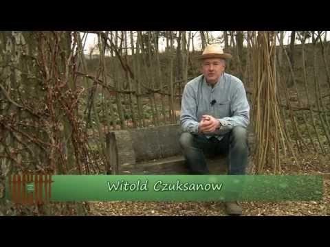 Ogród po polsku - odc. 2