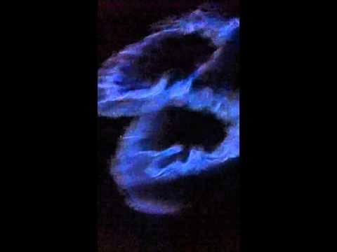 Sa Meute - Flames