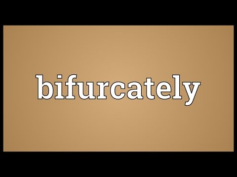 Header of bifurcately