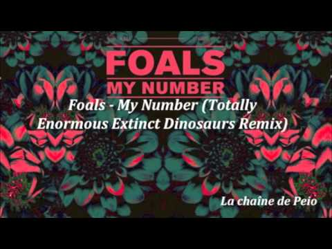 Foals - My Number (Totally Enormous Extinct Dinosaurs Remix) [HQ Audio]