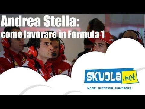 Andrea Stella è l'ingegnere che sussurra ad Alonso