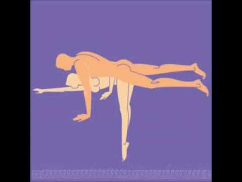 Sex Positions Vol 1 video