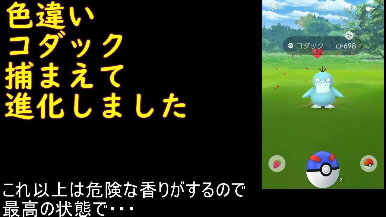 ポケモン go コダック 色違い