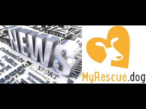 Computer America - News; MyRescueDog