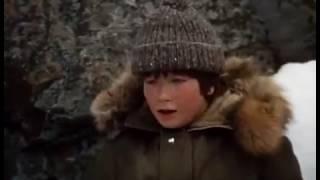 The Courage of Kavik The Wolfdog 1980 Full Movie Family Adventure Drama