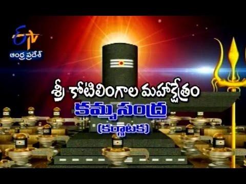Teerthayatra - Sri Kotilingala Mahakshetram, Kammasandra, Karnataka - 1st Dec 2015 - తీర్థయాత్ర –