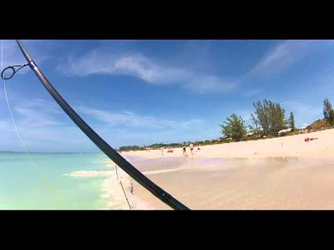 The Chomp Zone GoPro HD Hero 2 Florida Anna Maria Island Shark Fishing