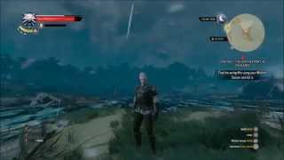 the witcher 3 xp glitch for lower levels