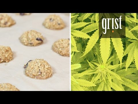 We explore the world of weed edibles