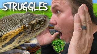 STRUGGLES WITH A BIG ANACONDA!!! | BRIAN BARCZYK