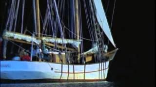 Return to Treasure Island (1996)  from catbugmoon