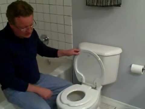 Toilet Training Seat Kids Toilet Seat In Lid Youtube