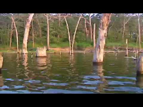 TAKE ME FISHING 101: Texas Freshwater Fishing [Official]