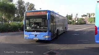 Mercedes-Benz Citaro, Pafos (Paphos - Cyprus)