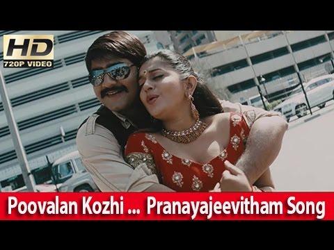 Poovalan Kozhi Koovmamo ... Meera Jasmine & Srikanth Romantic Song From - Pranayajeevitham [hd] video