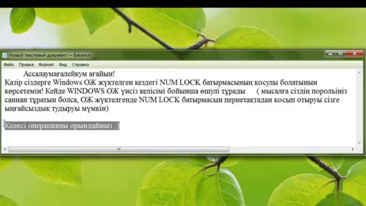 Как сделать так чтобы num lock включался автоматически 421