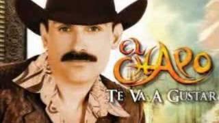 Vídeo 3 de El Chapo De Sinaloa