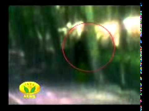 Ghost Images Real in India Real Ghost in India