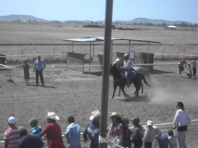 carreras de caballos en casas grandes chihuahua