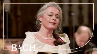 Bach - Cantata Süßer Trost, mein Jesus kömmt BWV 151 - Van Veldhoven | Netherlands Bach Society