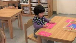 The Montessori Language Program