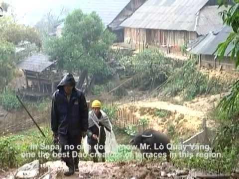 LEGATO - Sapa rice terraces