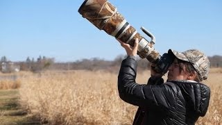 Tamron 150-600 f/5-f/6.3 Review: The ultimate wildlife lens for $1,000?