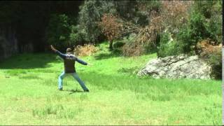Meditacion En Movimiento Parrissal Taekwondo Karate Chamanismo Yoga